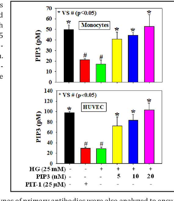 Effect of PIP3 on adhesion molecules and adhesion of THP-1 monocytes to  HUVEC treated with high glucose. | Semantic Scholar