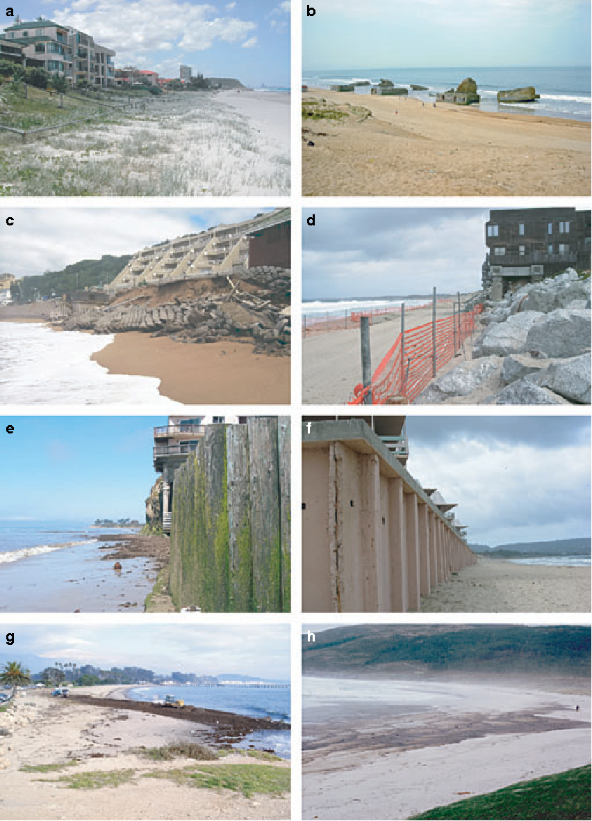 Sandy beach ecosystems: key features, sampling issues