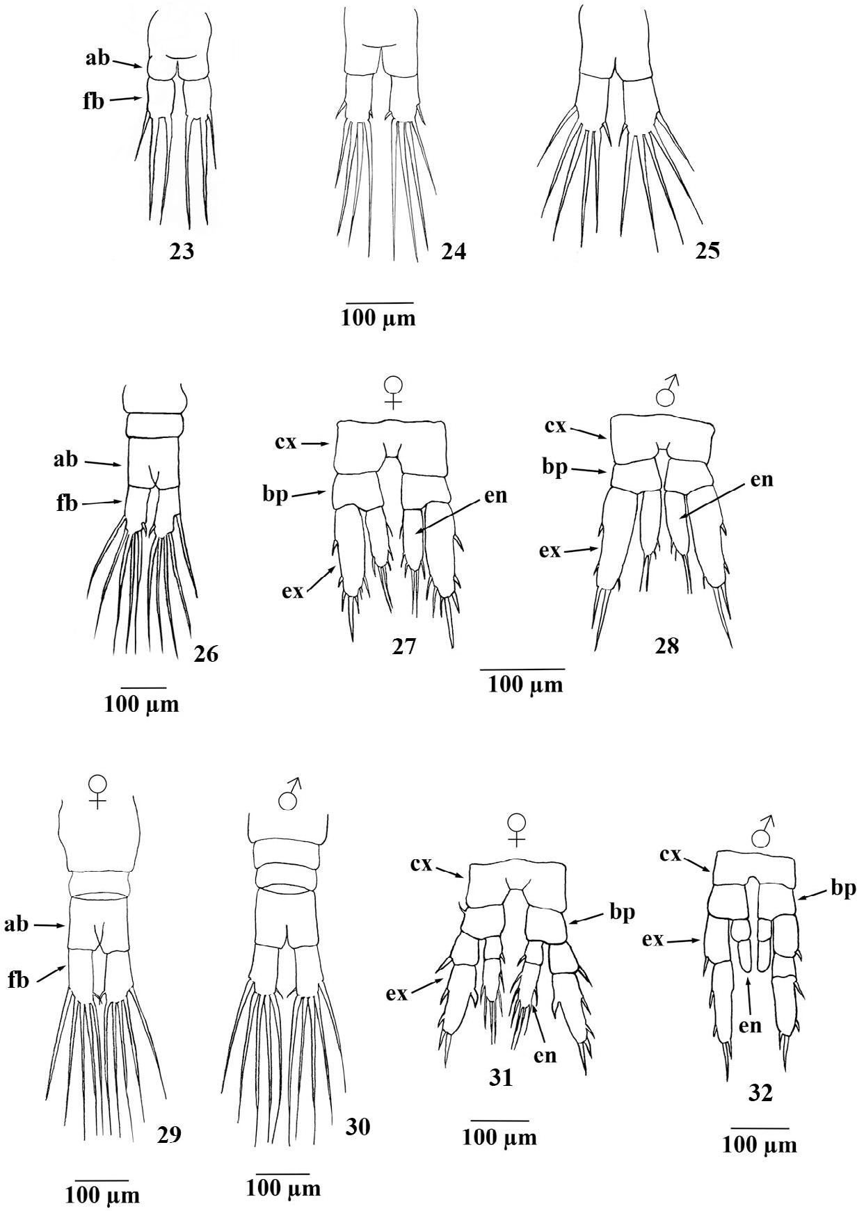 figure 23-32