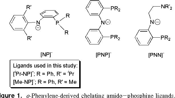 Figure 1 From Zirconium And Hafnium Complexes Containing Bidentate Diarylamido Phosphine Ligands Semantic Scholar