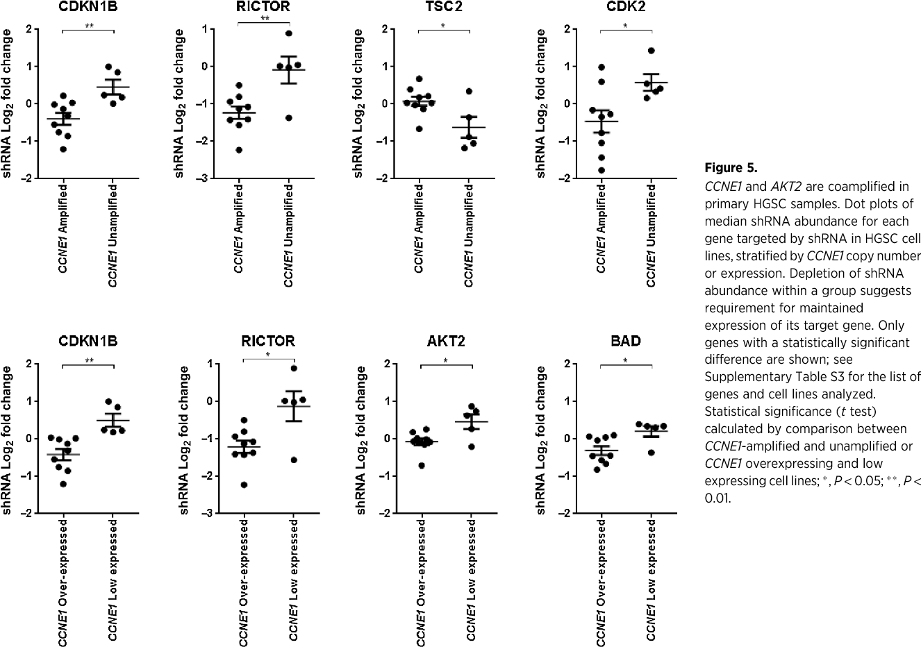 Pdf Selective Targeting Of Cyclin E1 Amplified High Grade Serous Ovarian Cancer By Cyclin Dependent Kinase 2 And Akt Inhibition Semantic Scholar