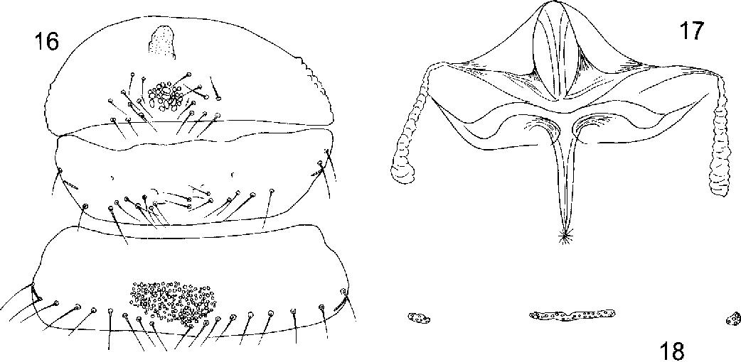 figure 16-18