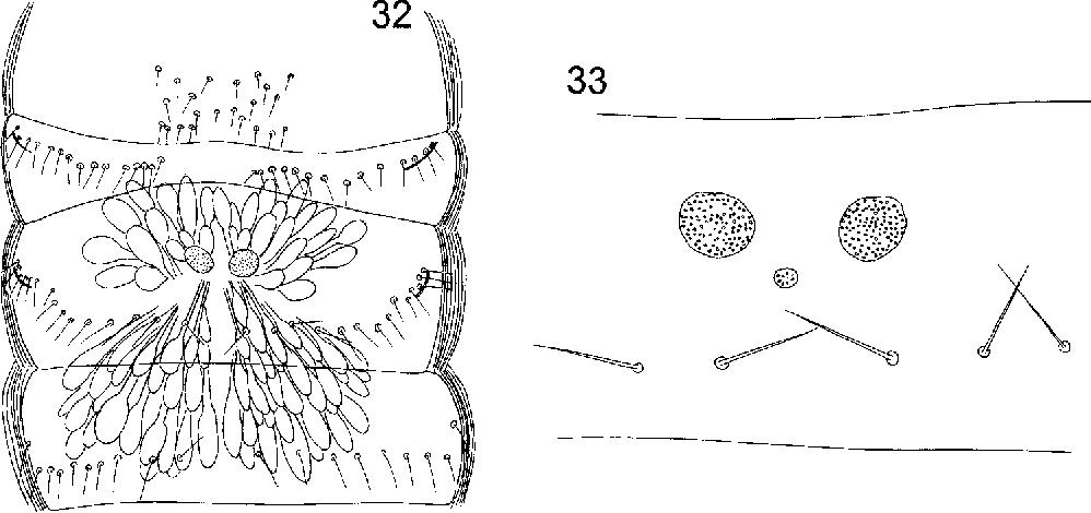 figure 32-33