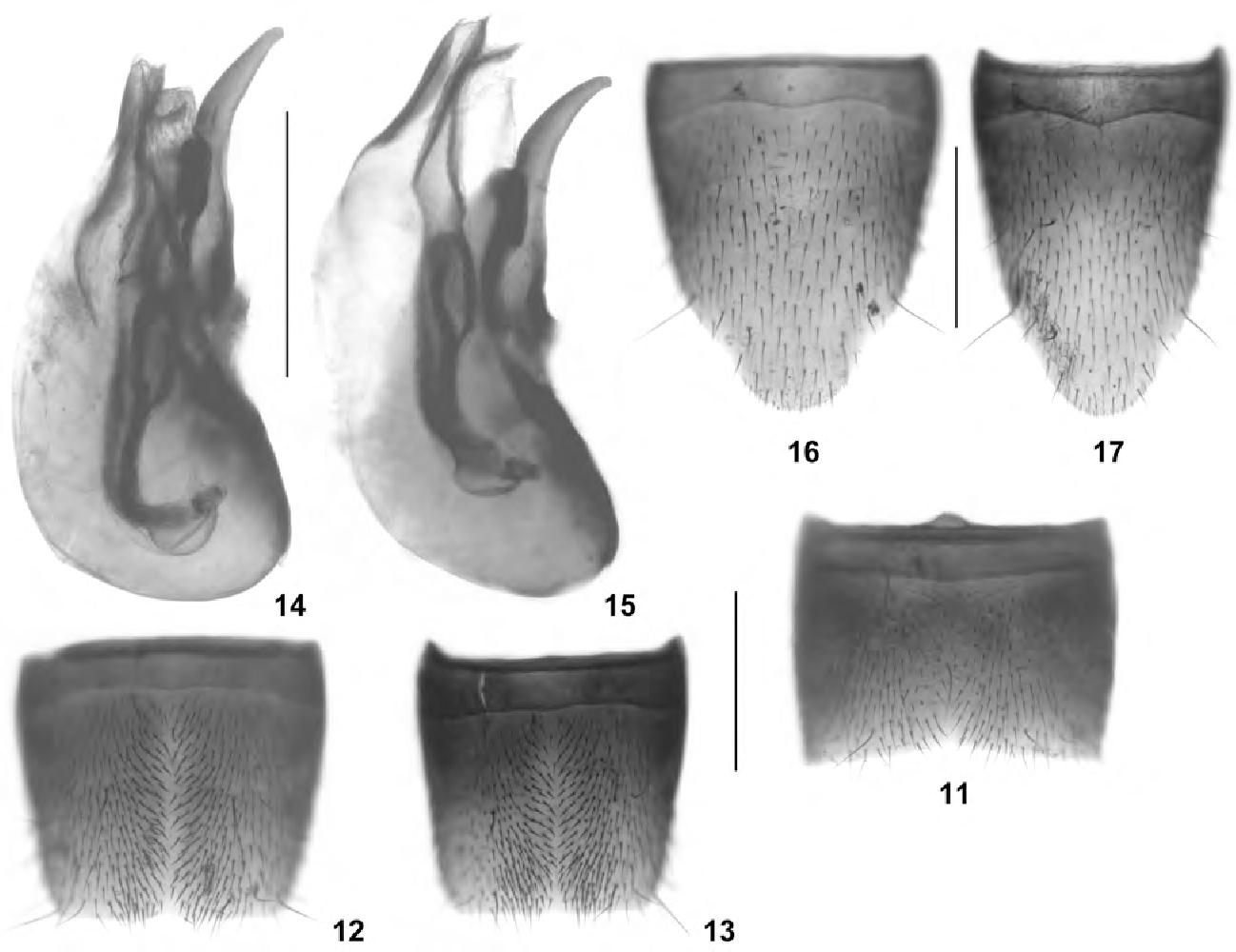 figure 11–17