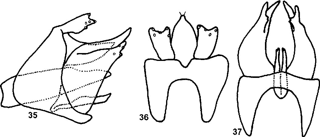 figure 20–21