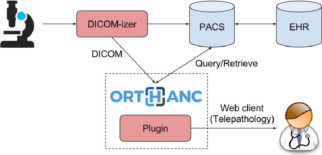 Figure 3 from Open Implementation of DICOM for Whole-Slide