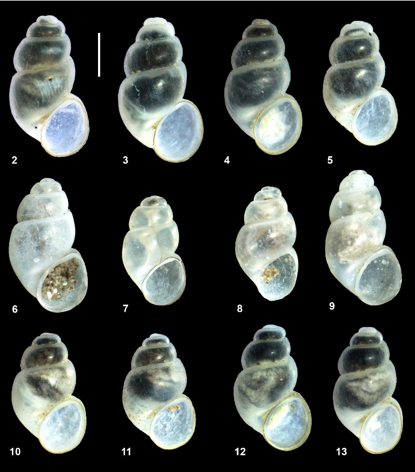 figure 2–13