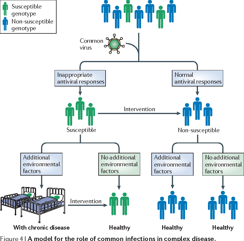 Figure 4 from Genome–virome interactions: examining the role