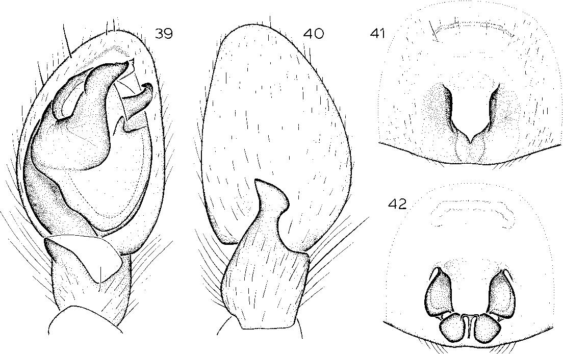 figure 23-30