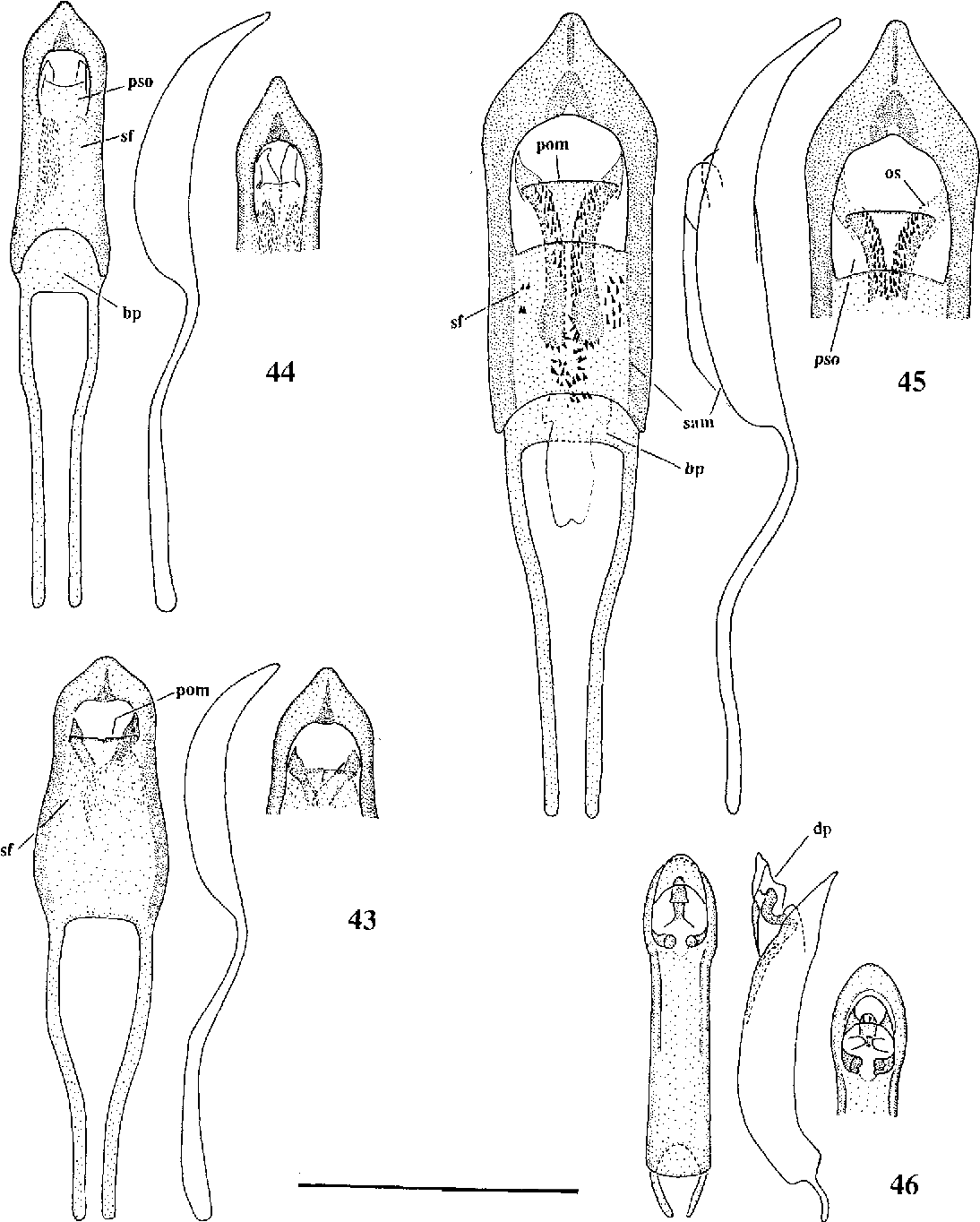 figure 43-46