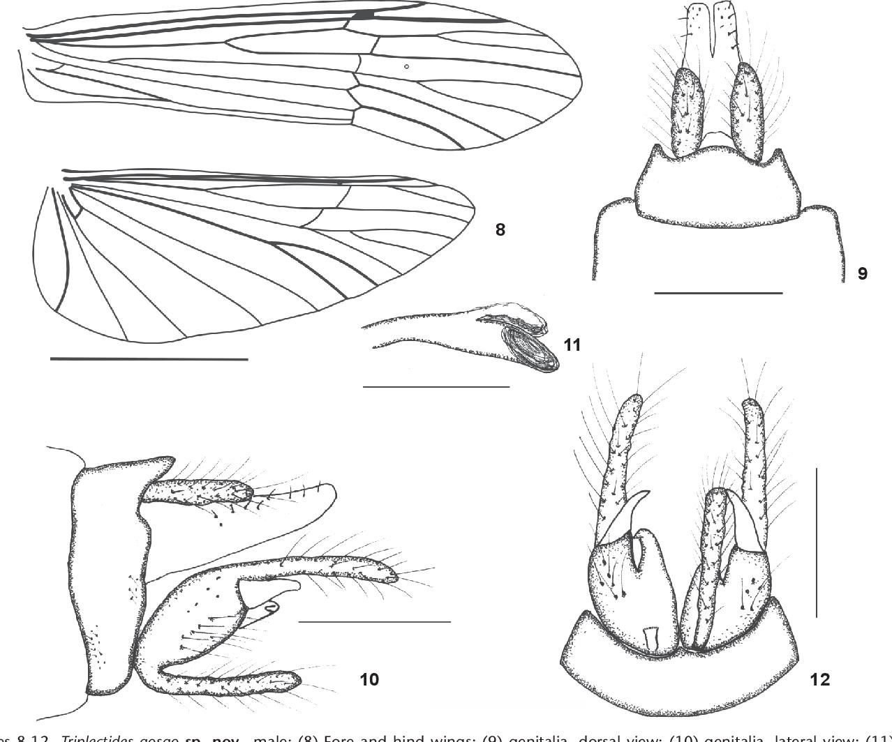 figure 8-12