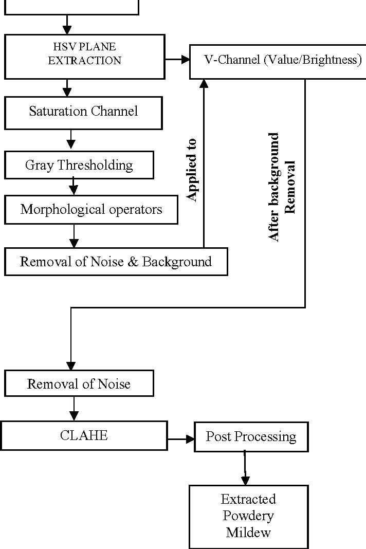 Figure 1 from Automated segmentation of powdery mildew