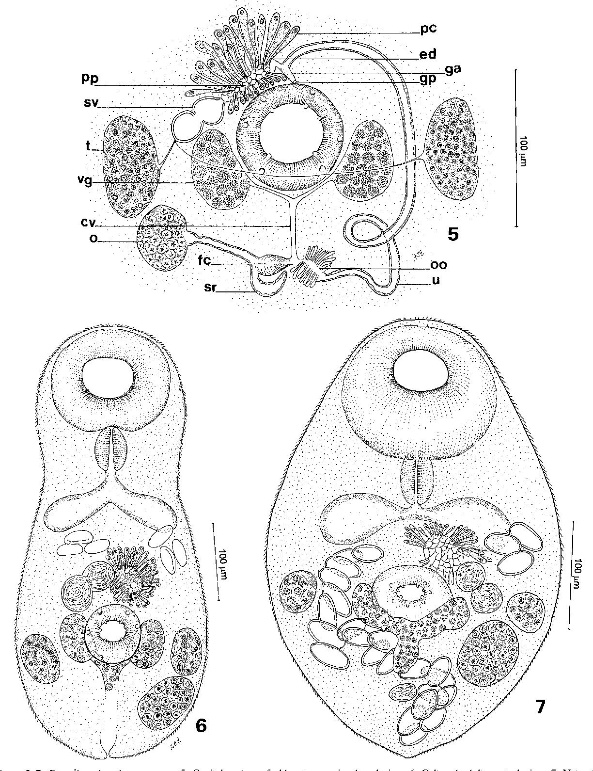 figure 5–7