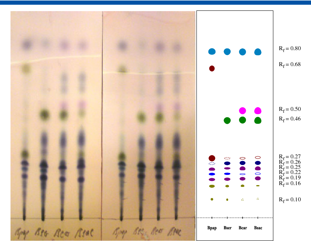 A thin-layer chromatography method for the identification of